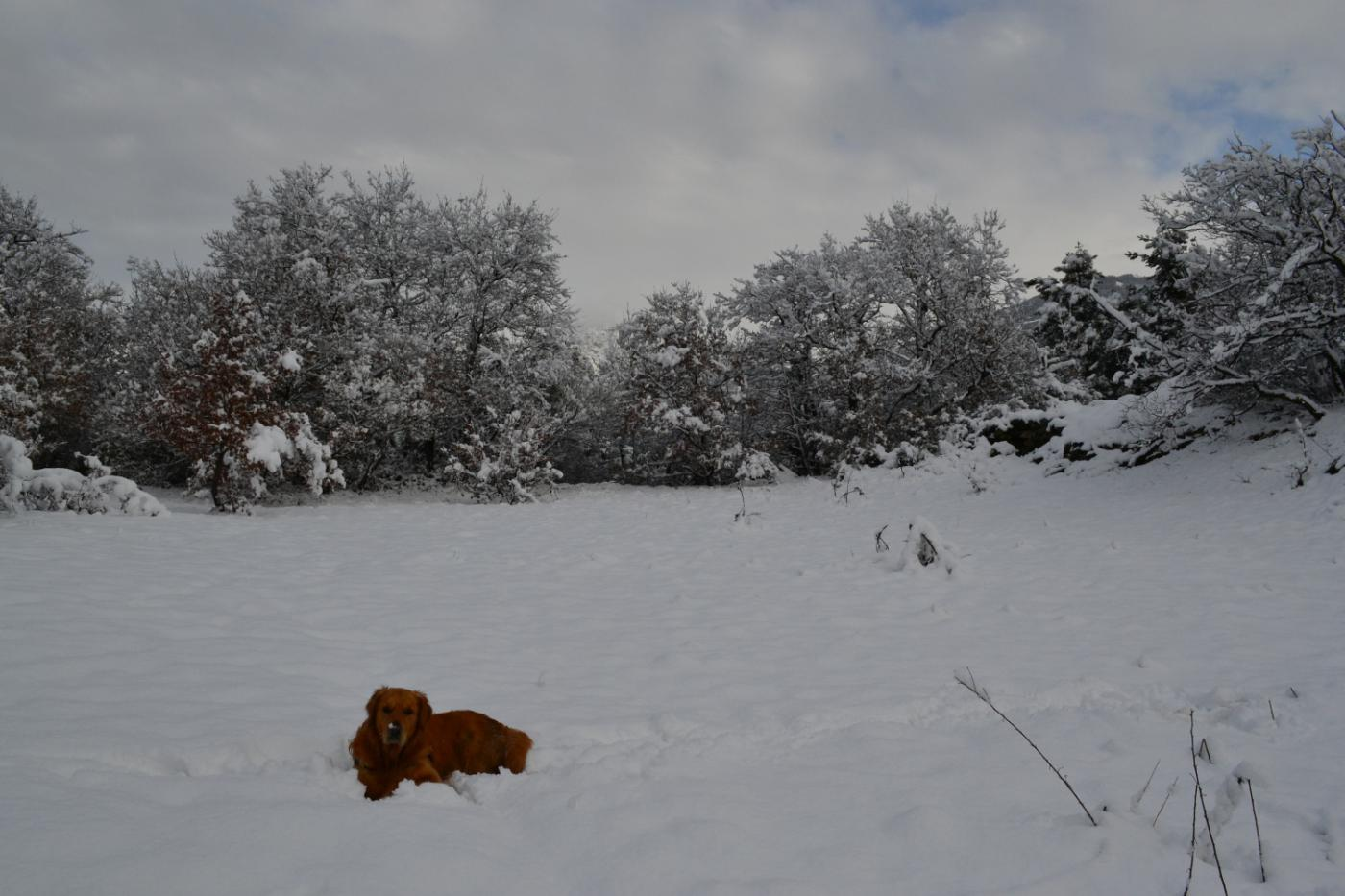 Zeus al Col di Natse
