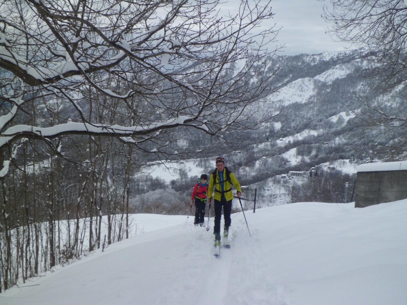 I due baldi giovani.... in lotta con l'alpe