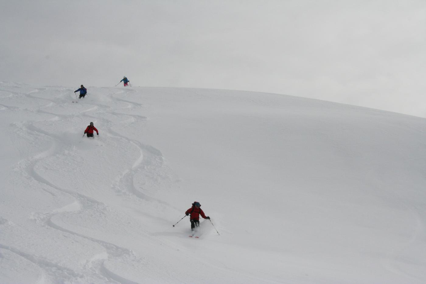 gli svizzeri in discesa