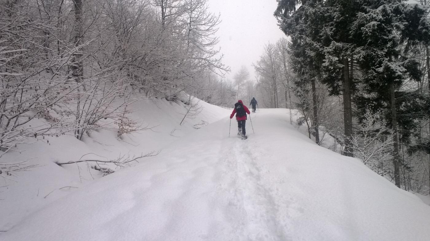 Nella parte bassa tracciando nella neve pesante