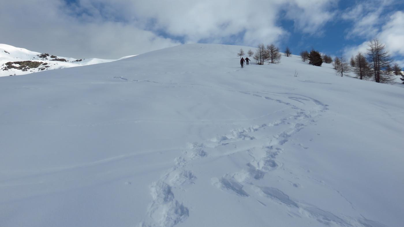 Cialmassa (Monte) e Cima delle Serre da Serre per la Costa Serre 2015-02-28