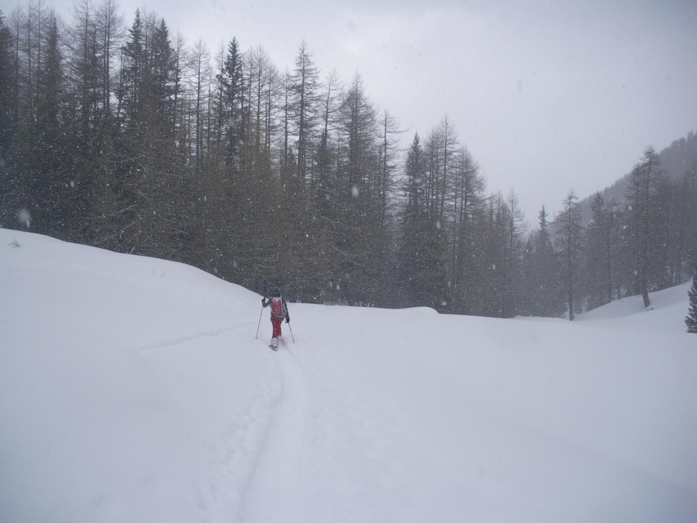 a ripreso a nevicare fitto sulla via del ritorno..