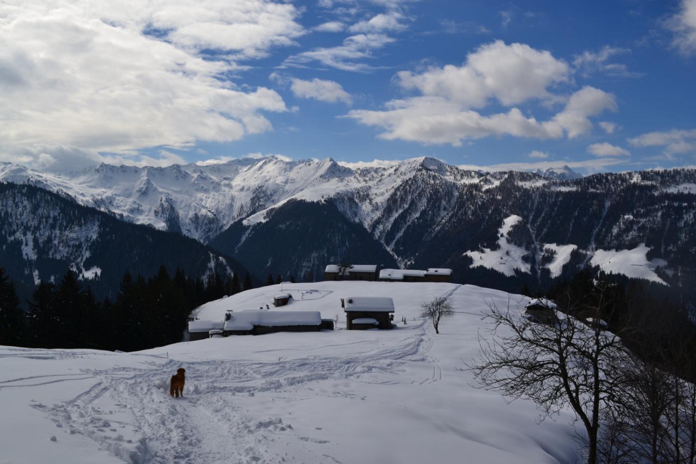 Corte Grassa (1614 m)