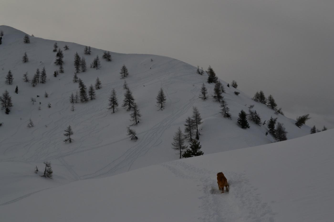 in vista dell'accesso alla cresta