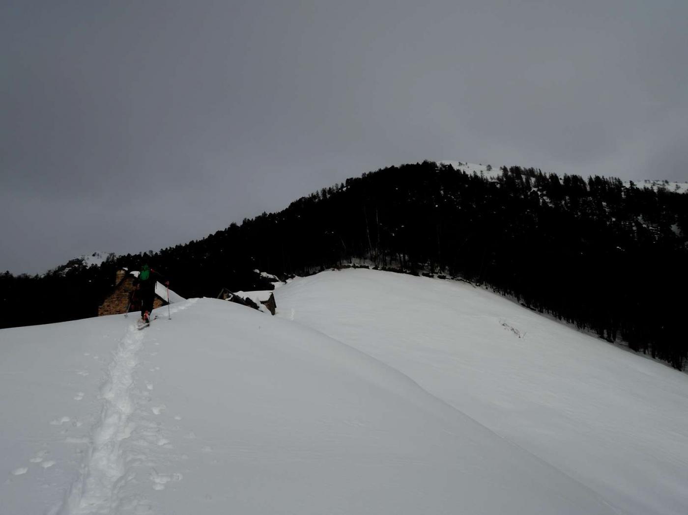 Alpe Gora.jpg