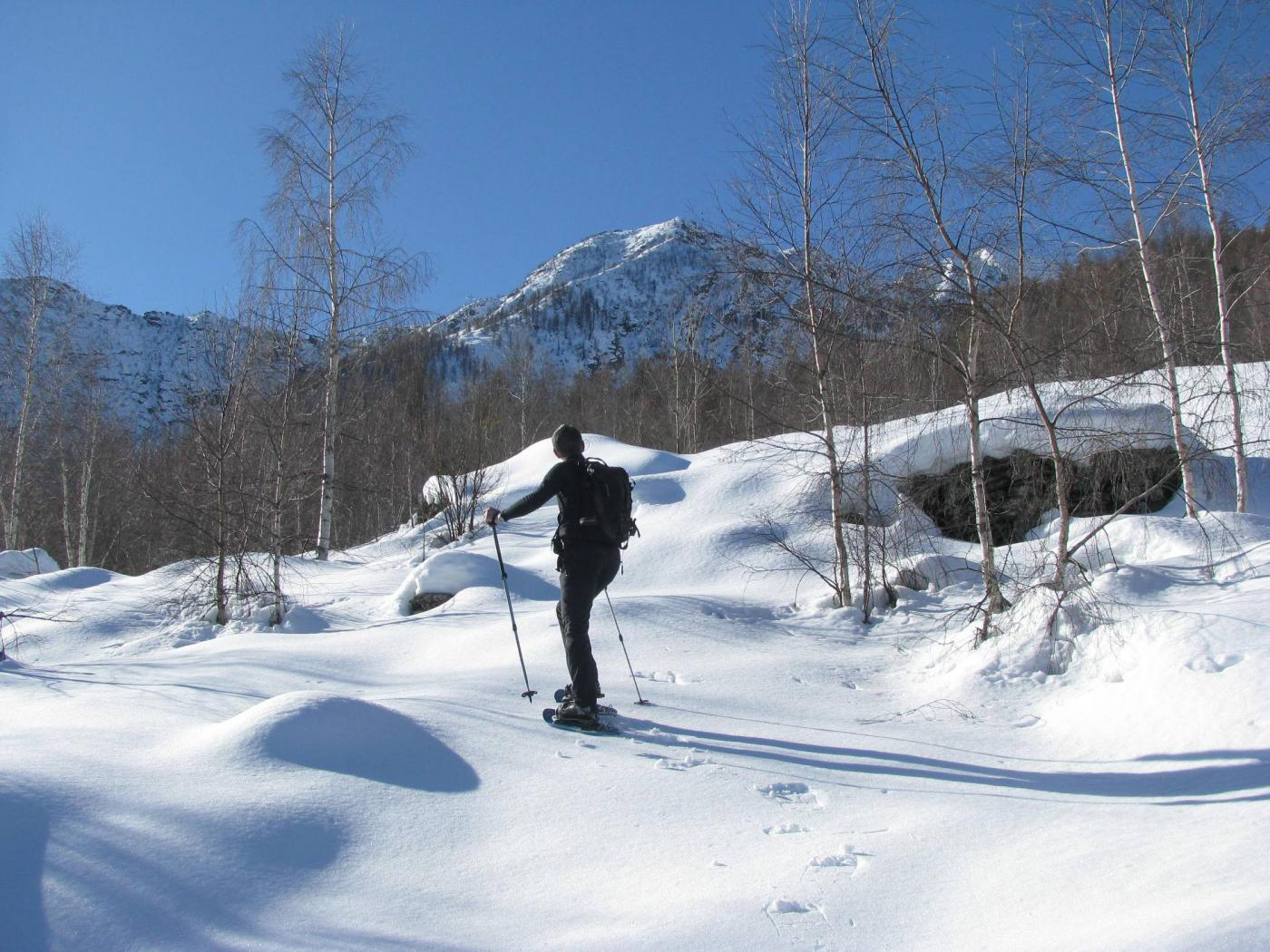 Salendo verso l'Alpe Volanza