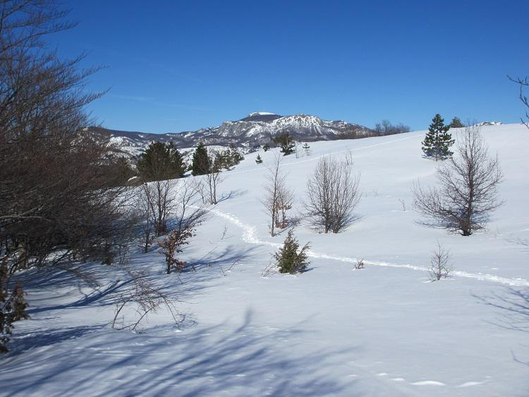 Panoramica Maggiorasca