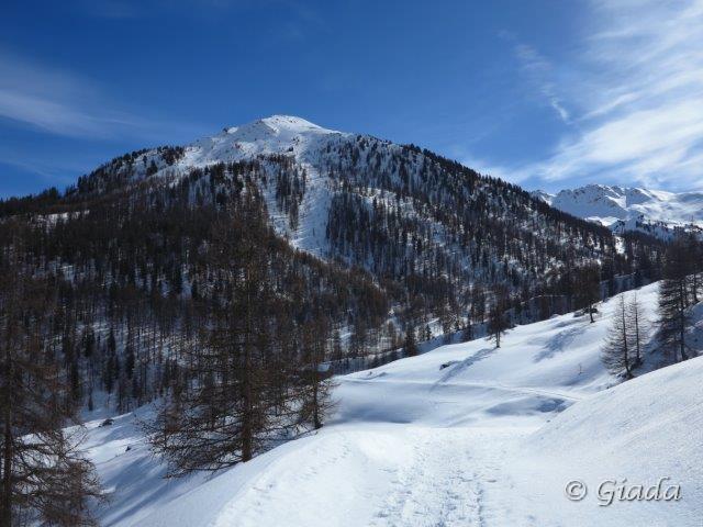Salendo si apre il panorama verso la cresta della Dormilleuse