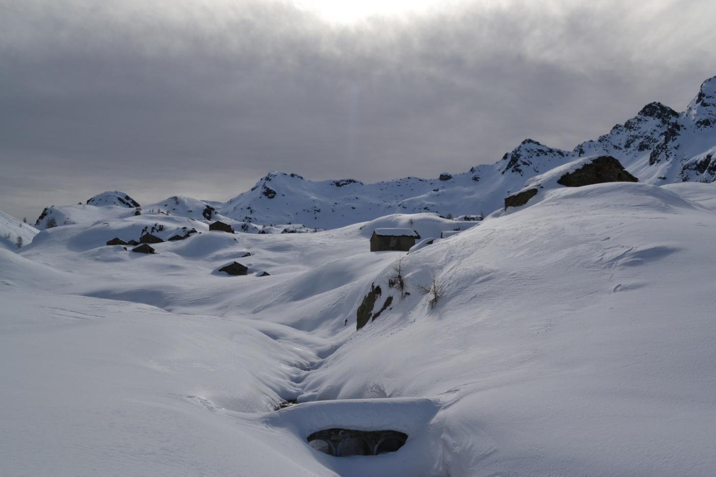 arrivo all'Alpe Loo di sopra