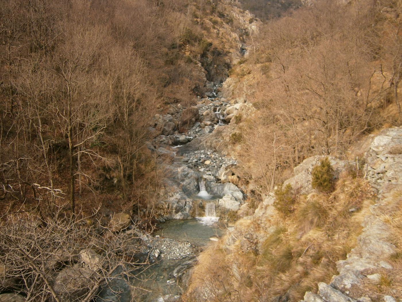 Rio Gandolfi