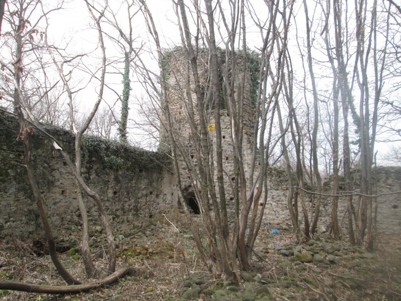 resti di un castello nei boschi