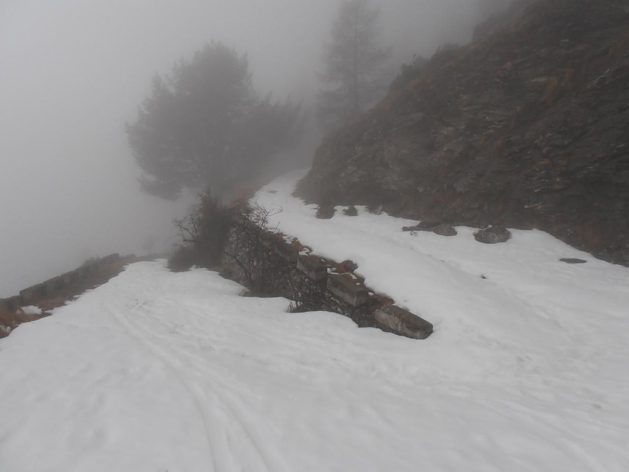 04 - salendo la stradina sul versante S costringe ad alcuni gava-buta