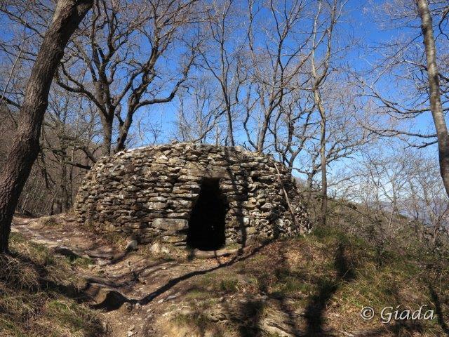 Casella nel bosco sotto al Pisciavino