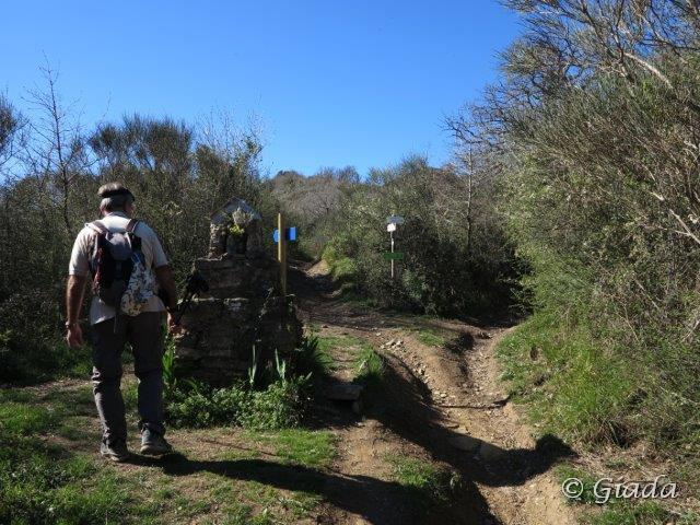Dalla Madonnina al bivio per la Fonte Carbonaira e la Sella Bignone