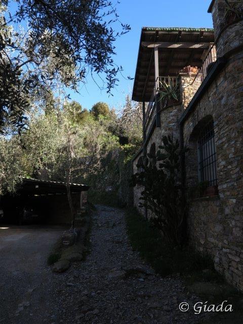 Verso Capo Mele