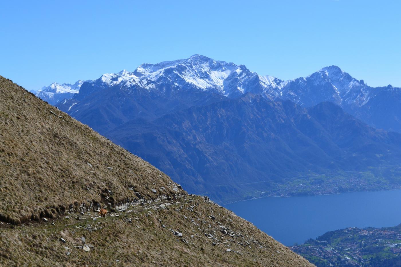 sul sentiero che taglia la base del Tremezzo con le Grigne sullo sfondo