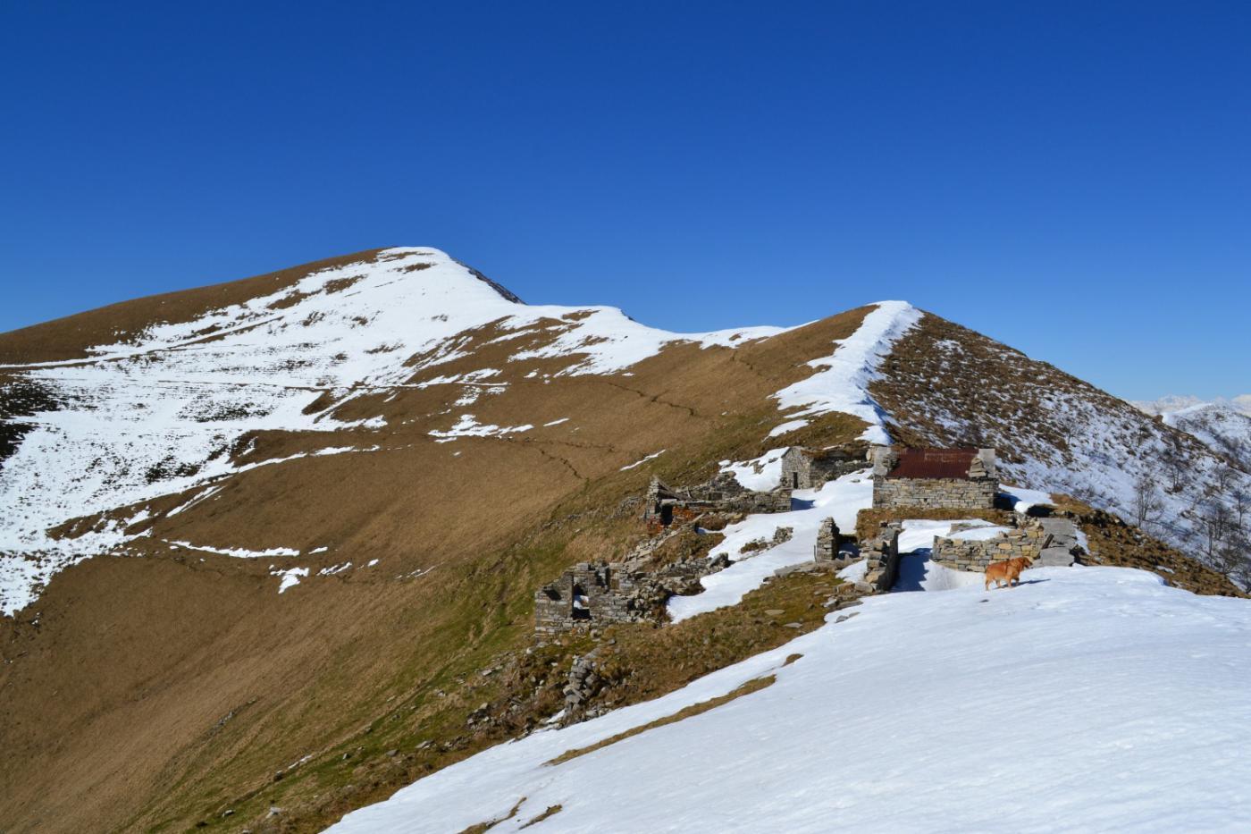 Alpe di Tremezzo con la dorsale che porta all'omonimo monte (a sinistra)