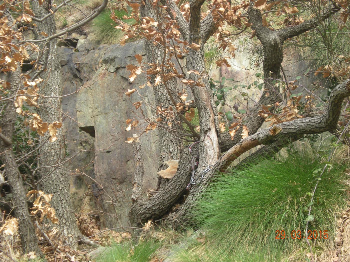 la sosta con catena su albero al quarto tiro appartiene forse alla Diretta?