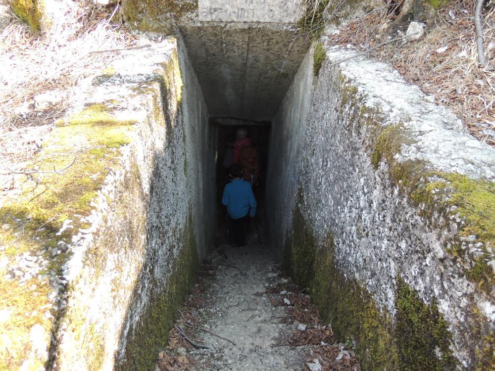 Orsa (Monte) e Monte Pravello da Saltrio, Linea Cadorna 2015-03-29