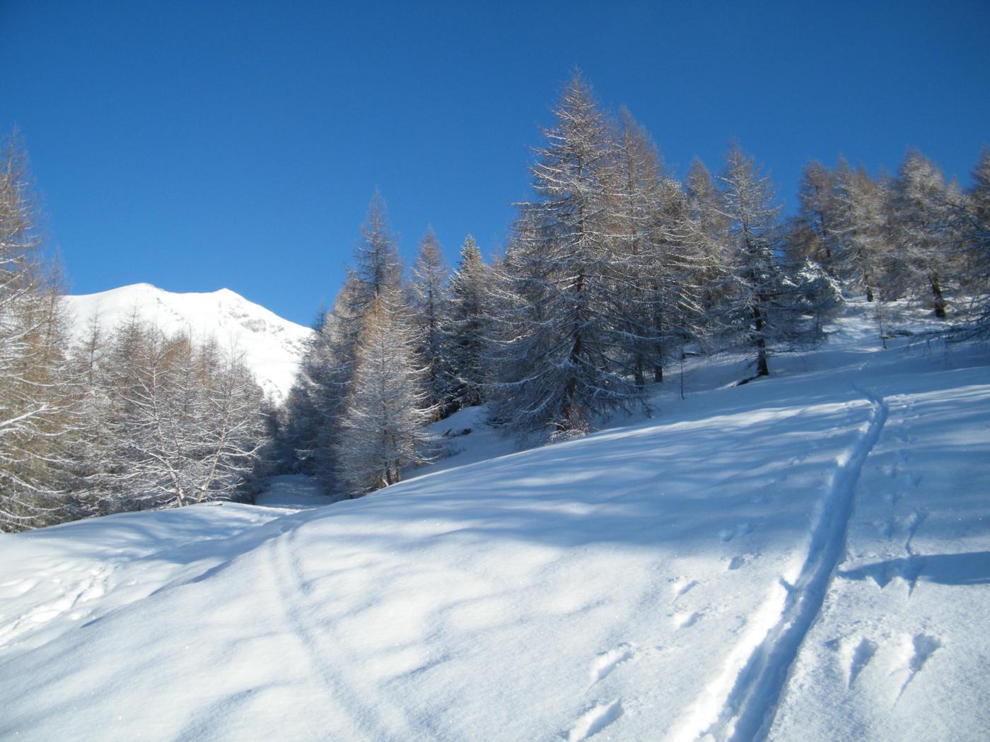 paesaggio invernale stamattina