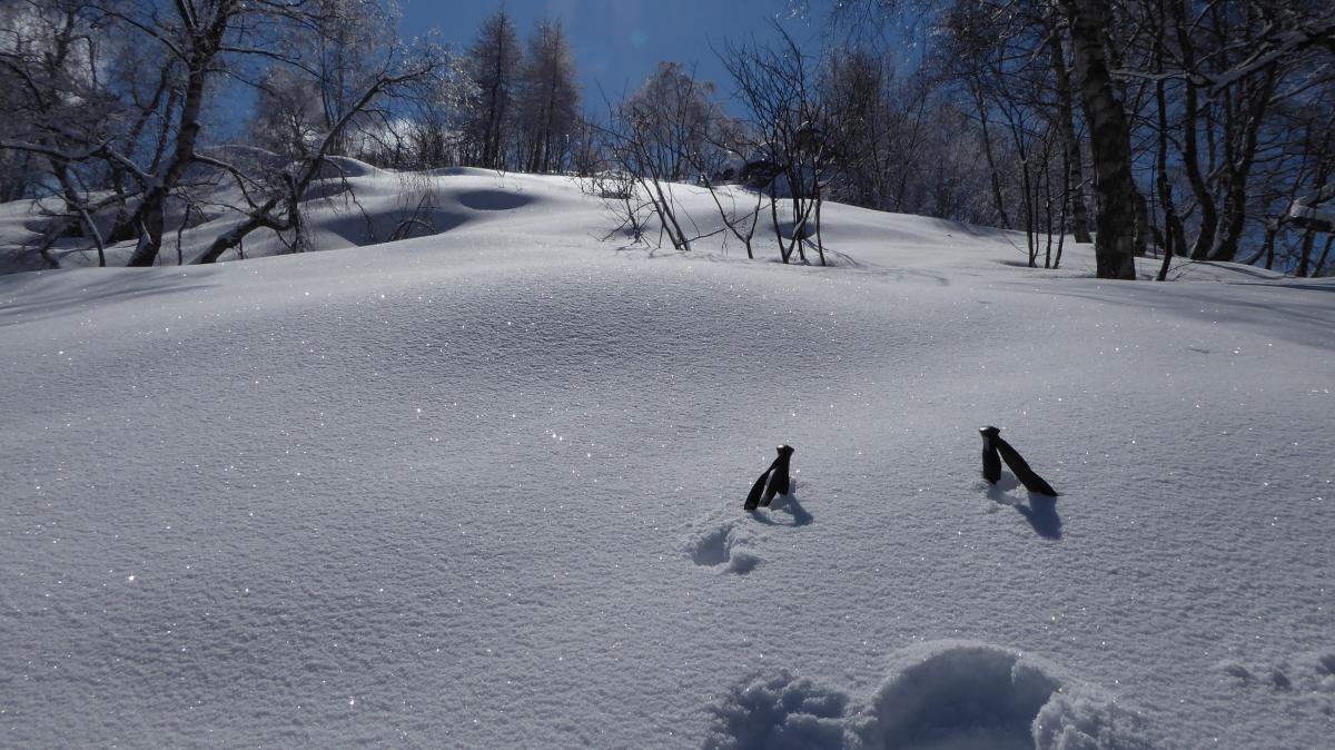 ancora molta neve