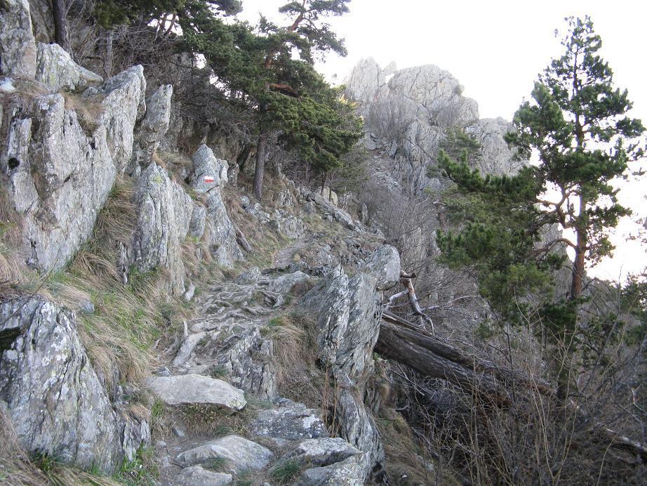 ultimo tratto verso Rocca Sella