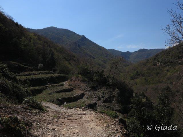 Dal sentiero verso l'alta valle