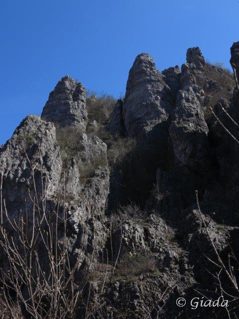 I Giganti del Giardino di Monte Nero