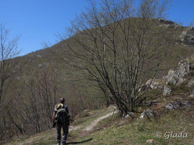 Alla Colla di Curenna dove finisce il Sentiero dei Giganti