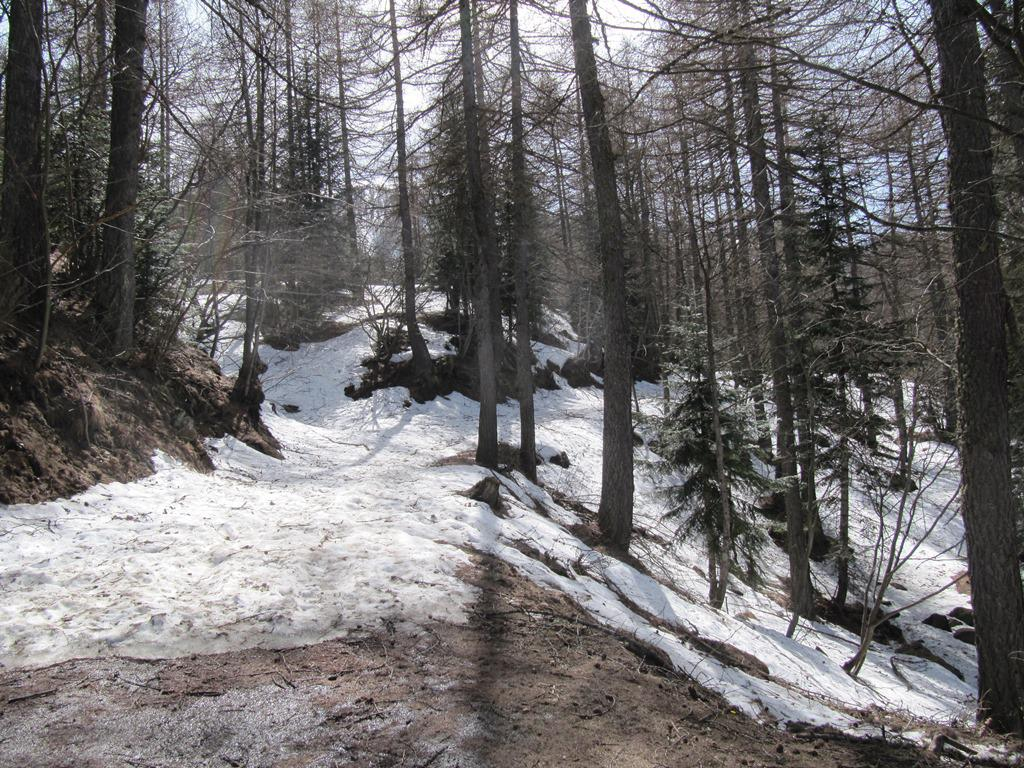 neve dalla partenza