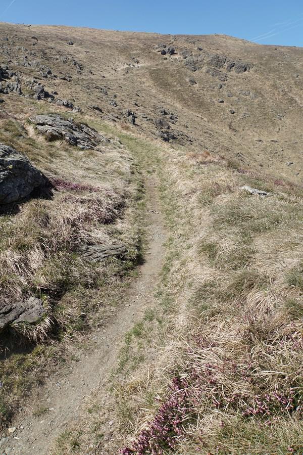 Reixa (Monte) da Sciaborasca per il parco del Beigua 2015-04-15