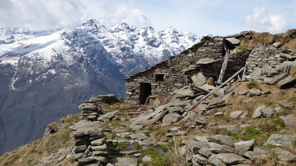Alpe Dreja