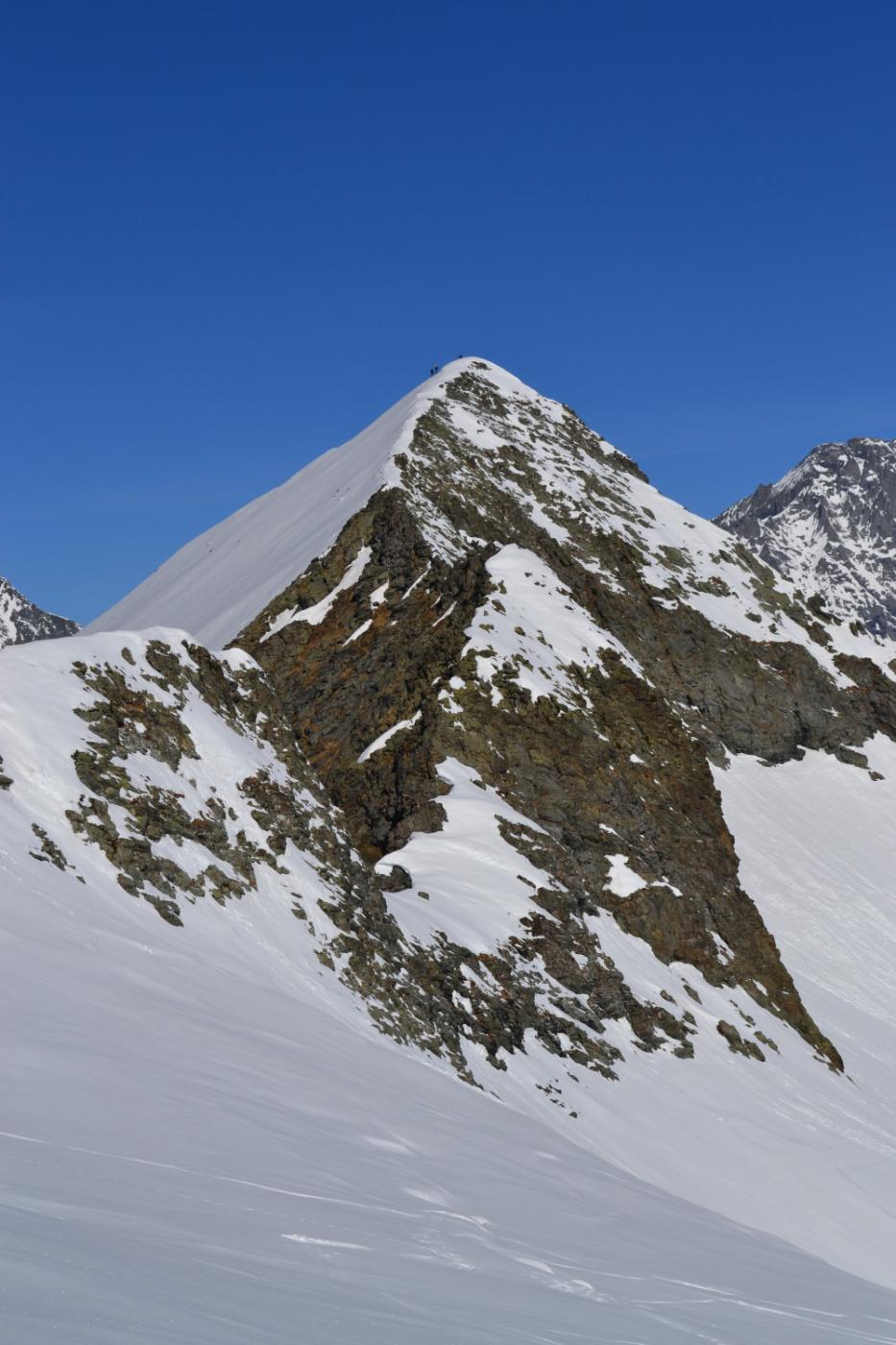 Punta Lucellina con sciatori in cima
