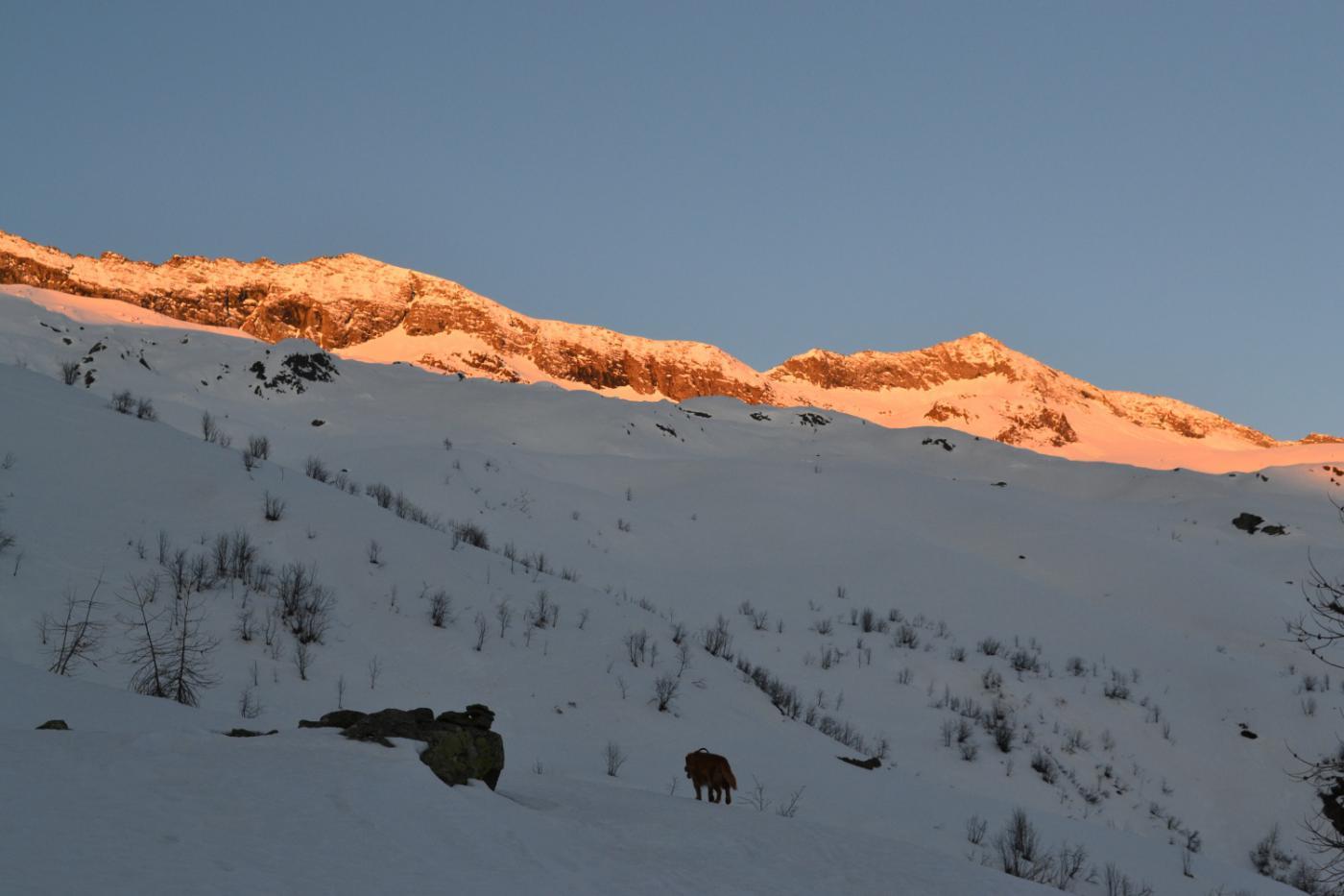 alba infuocata sulla Cima Autour (a sinistra)