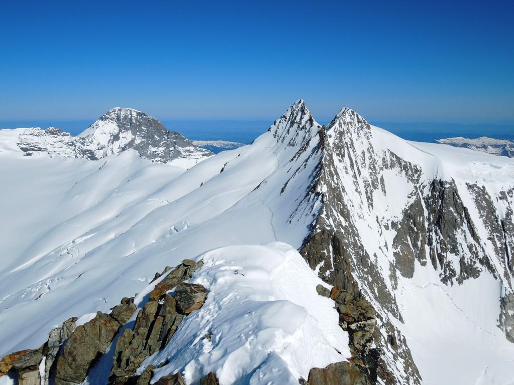 La cima con i due Fiescherhorn e l'Eiger