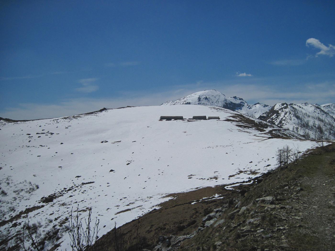 L'Alpe del Conte