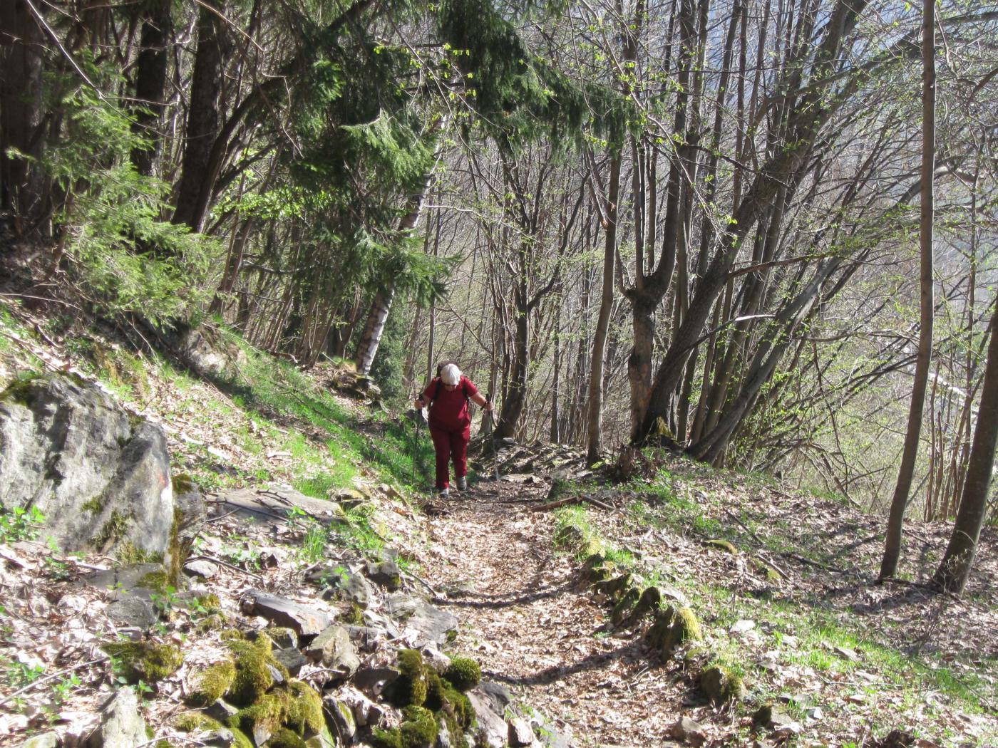 il bel sentiero appena dopo il paese di posio