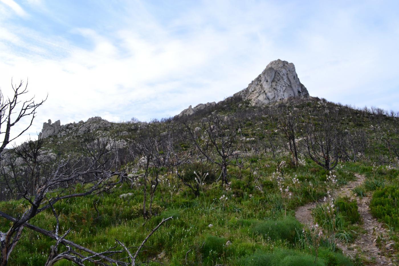 il promontorio roccioso di Monte Ruju