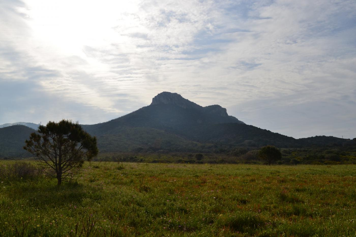 Monte Ruju visto alla fine del sentiero