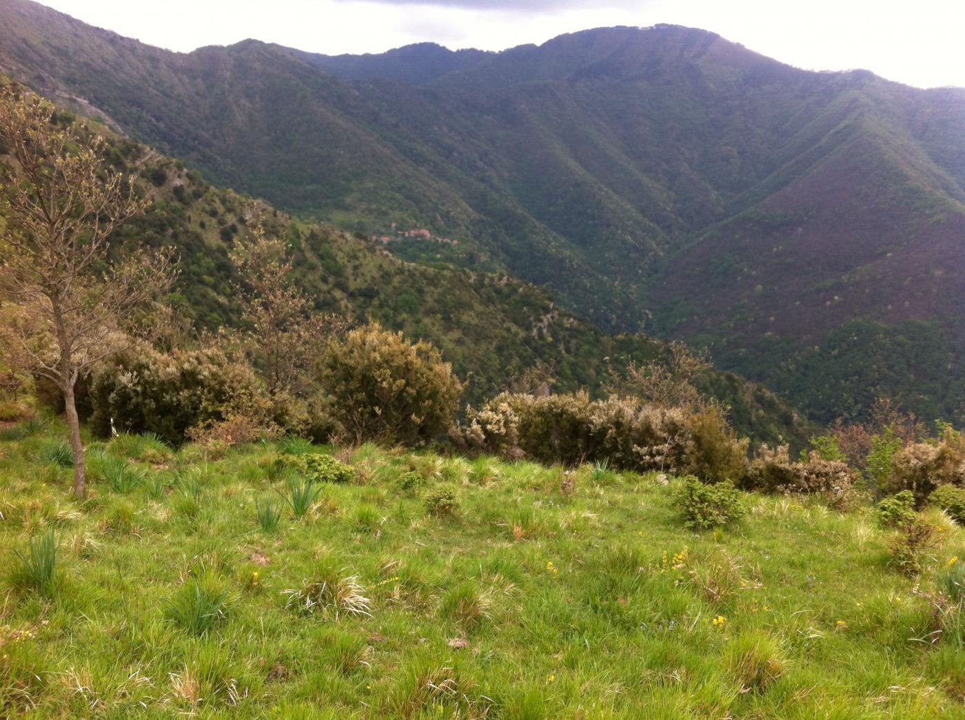 Monte Lago e Canate