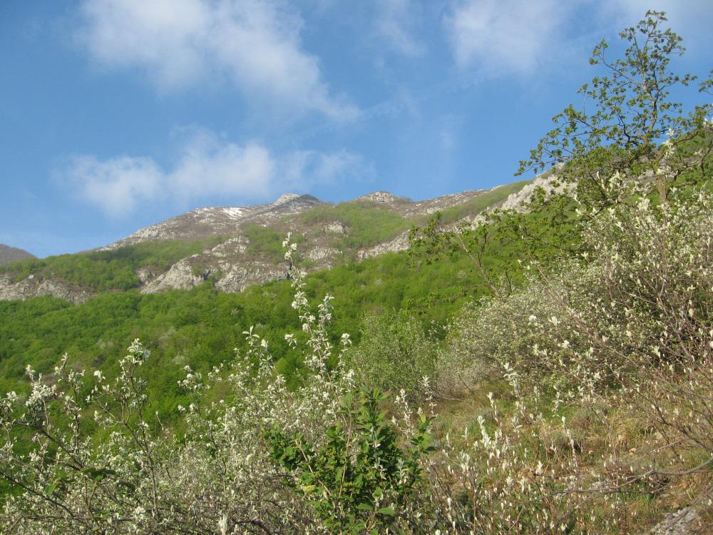 Rocca Vanciarampi da Tetti Barlotto