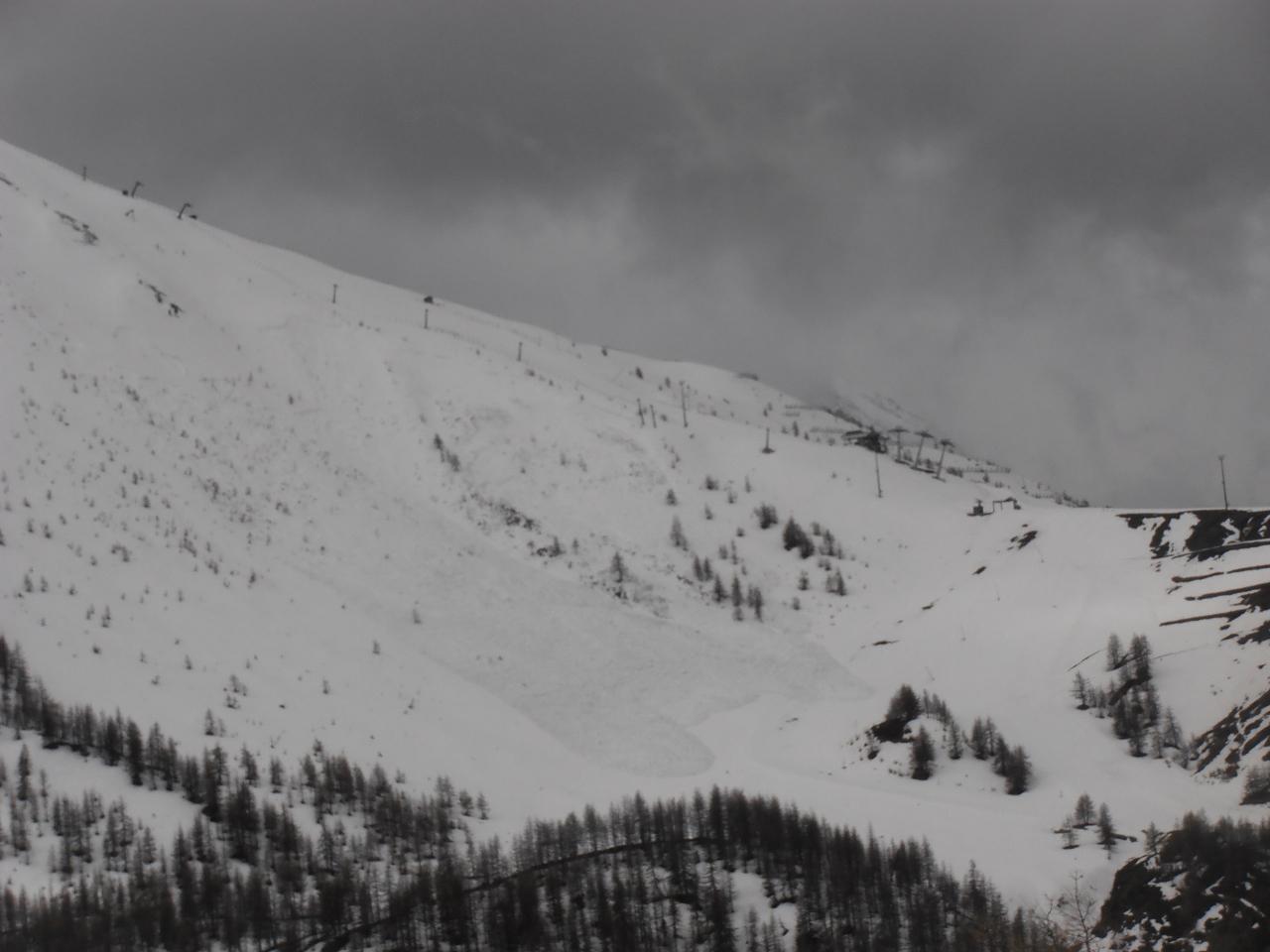 03 - la valanga segnalata ieri che ha raggiunto le piste (Chiuse) del Monte Sises