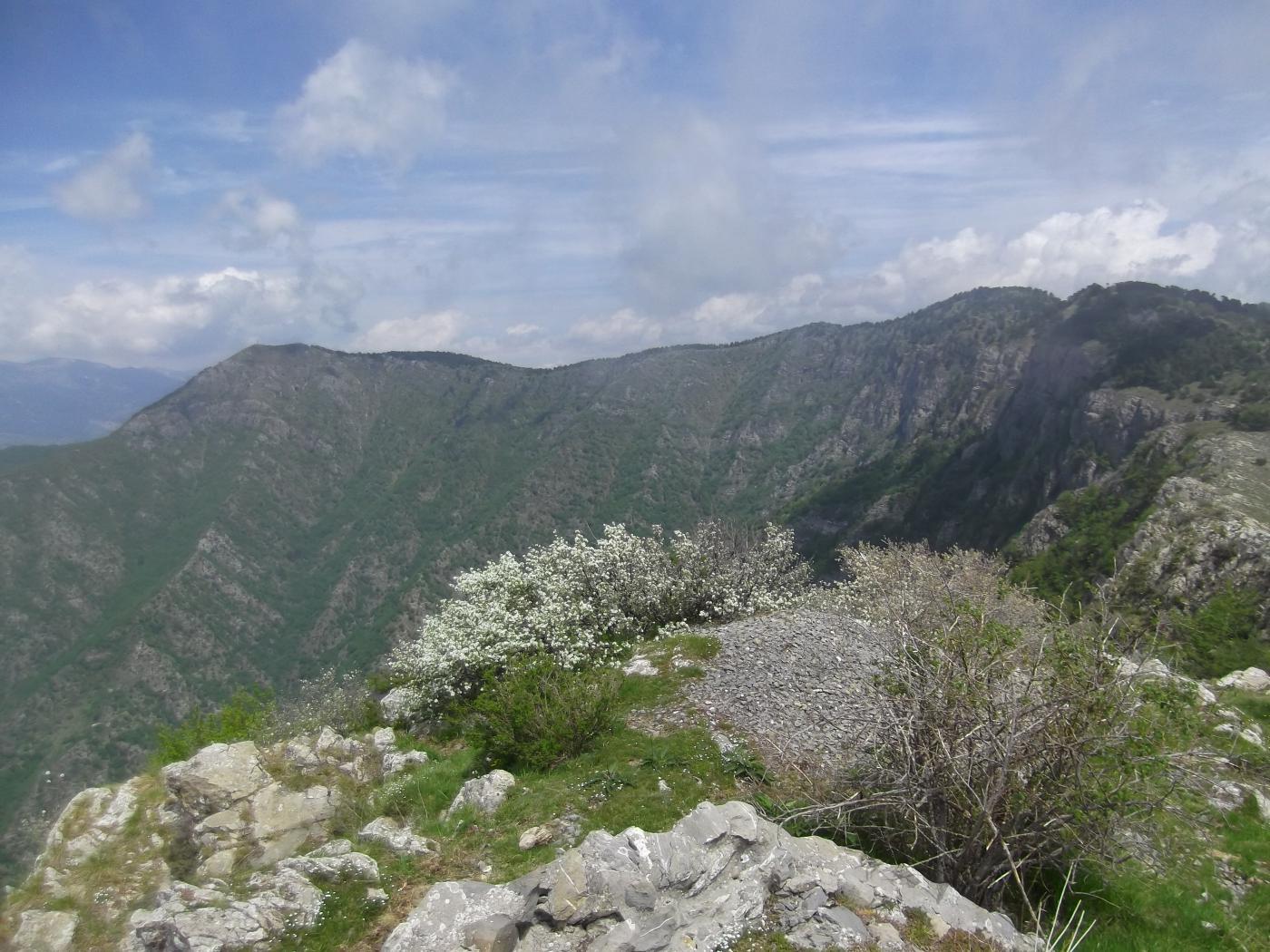 L'Arpette e la Tete d'Alpe dal Fourquin.