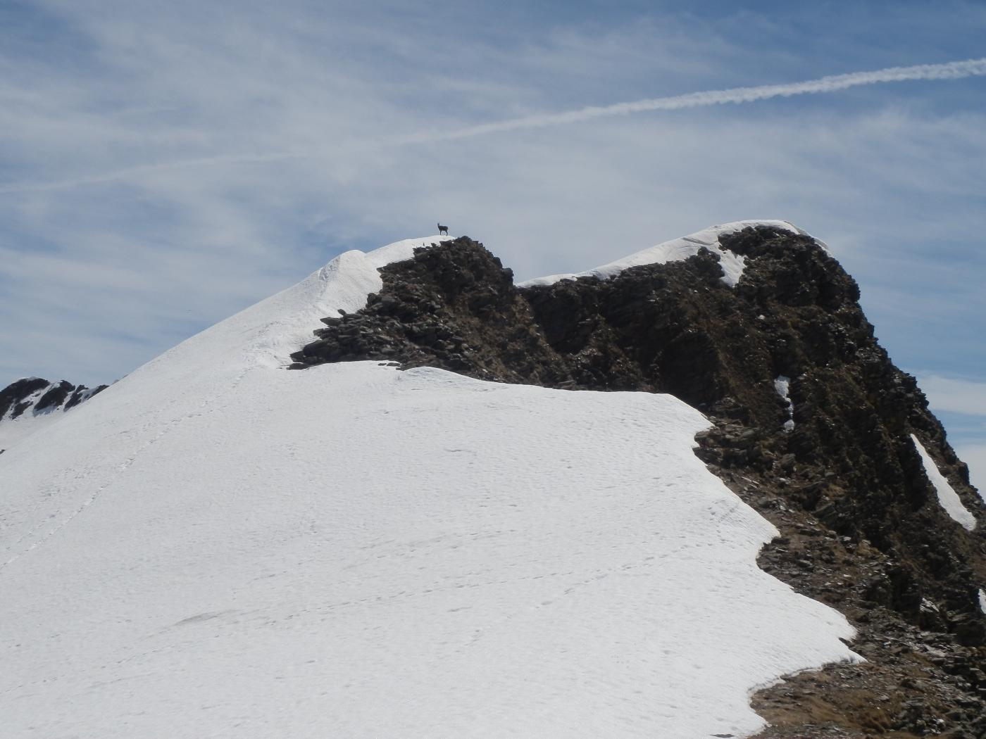 arrivo al colle presso il Passo Bue, sullo sfondo la spalla della Rognosa  con la cresta