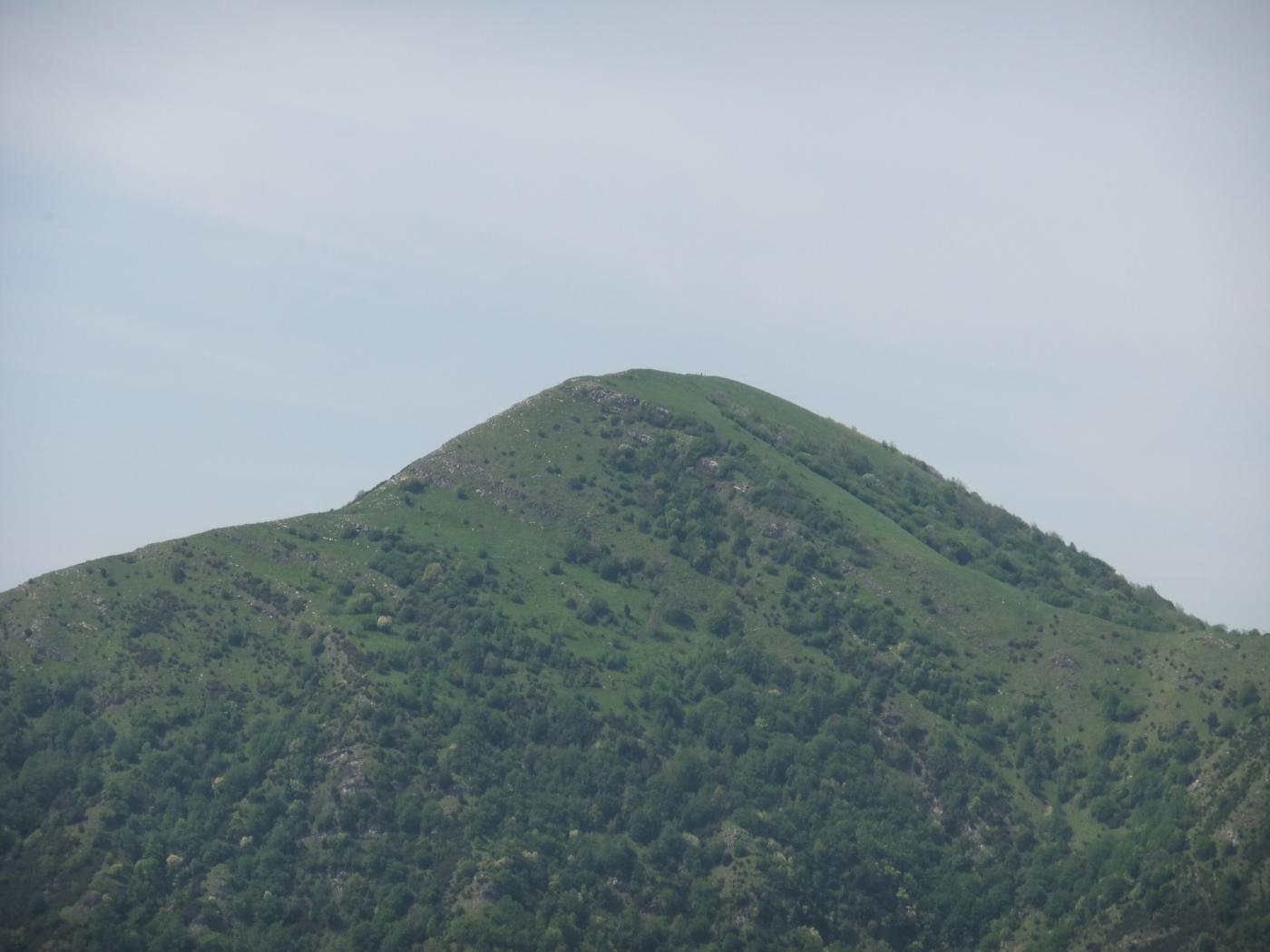 Alpesisa da Capenardo