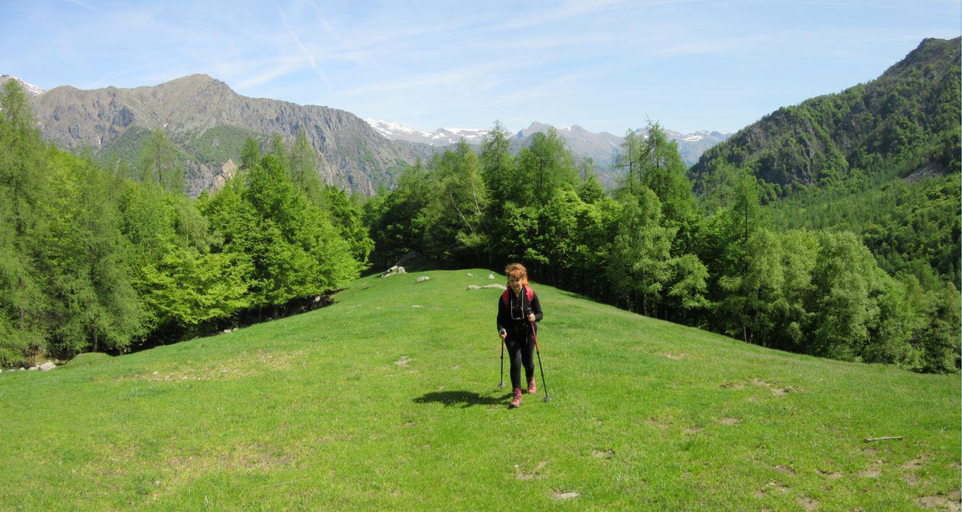 Nei pressi dell'Alpe Longimala