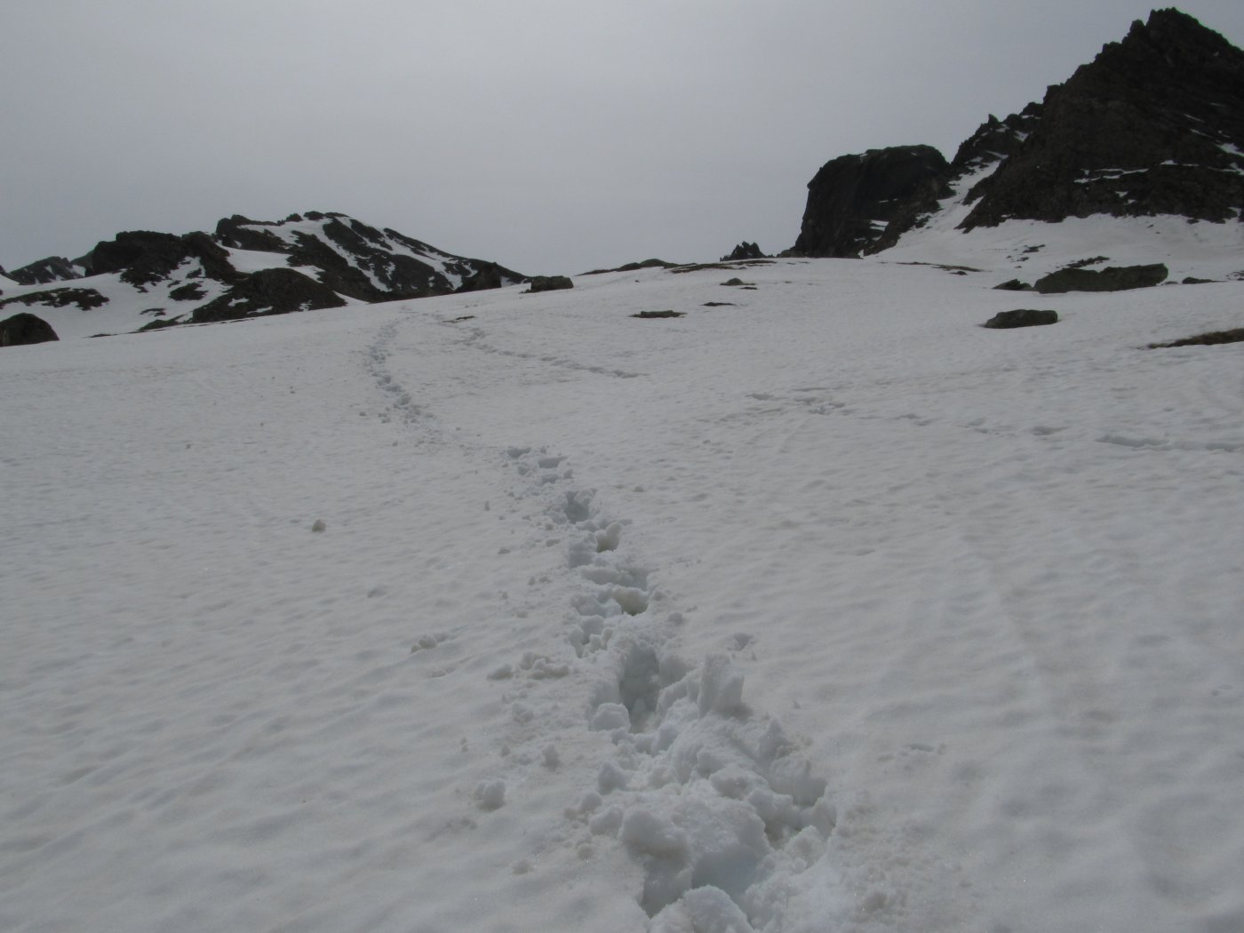 per rendere l'idea della qualità della neve
