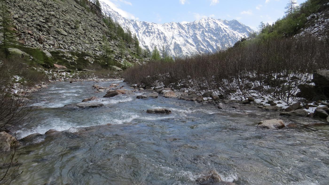 Il vallone incassato dove scorre il Rio Geri