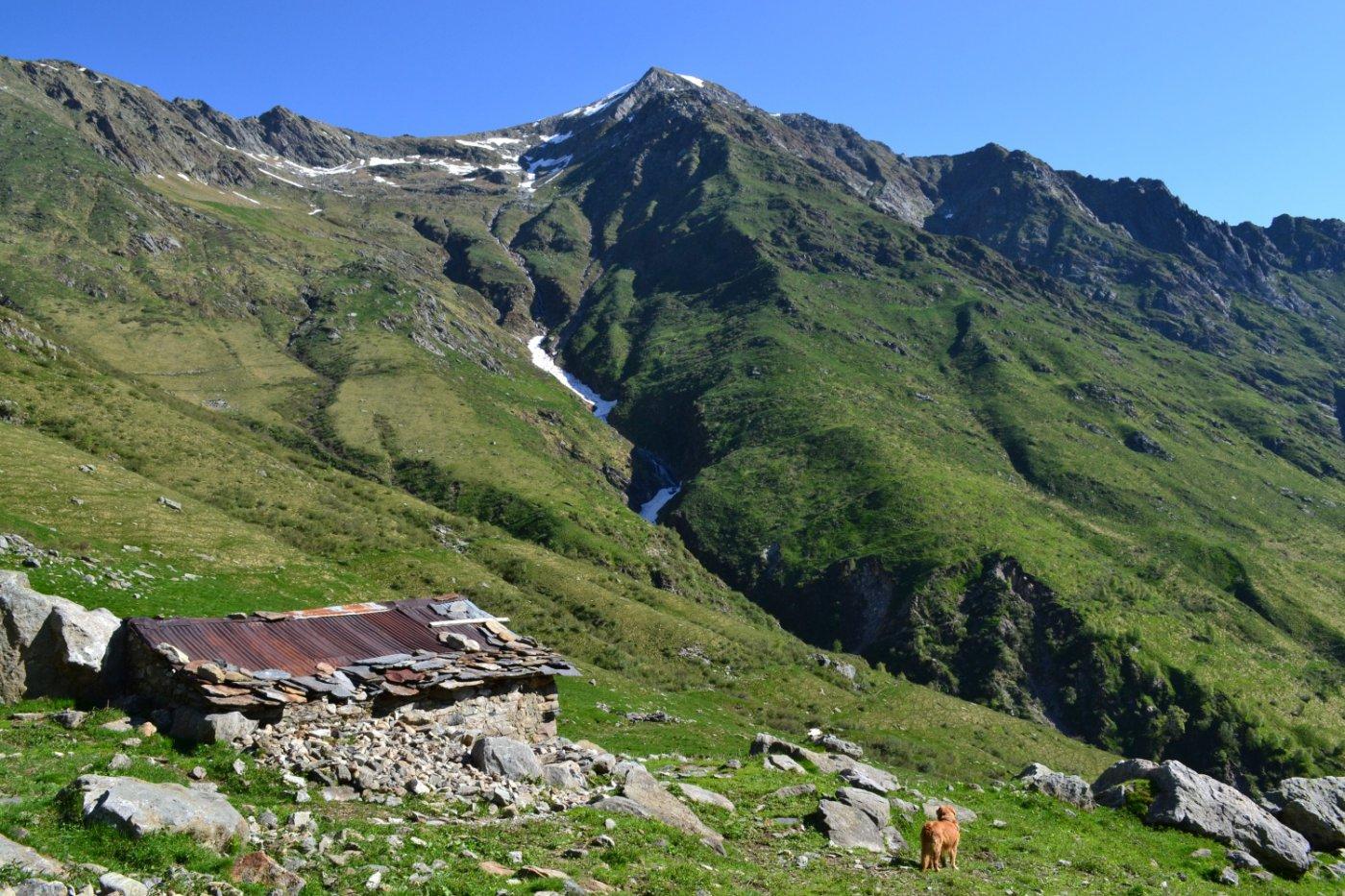 il Monte Cardinello visto dall'Alpe Prato Fiorito (1559 m)