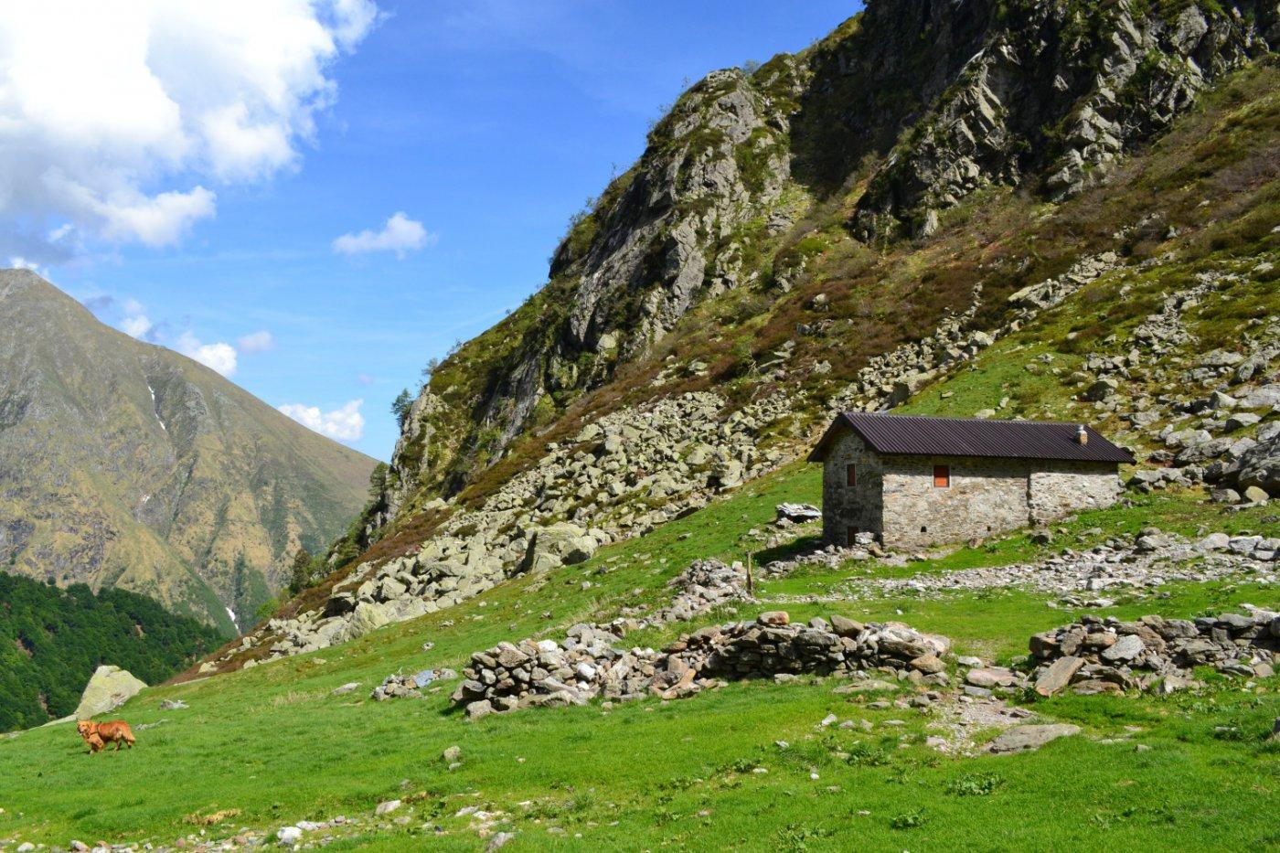 Baita Camedo (1539 m)